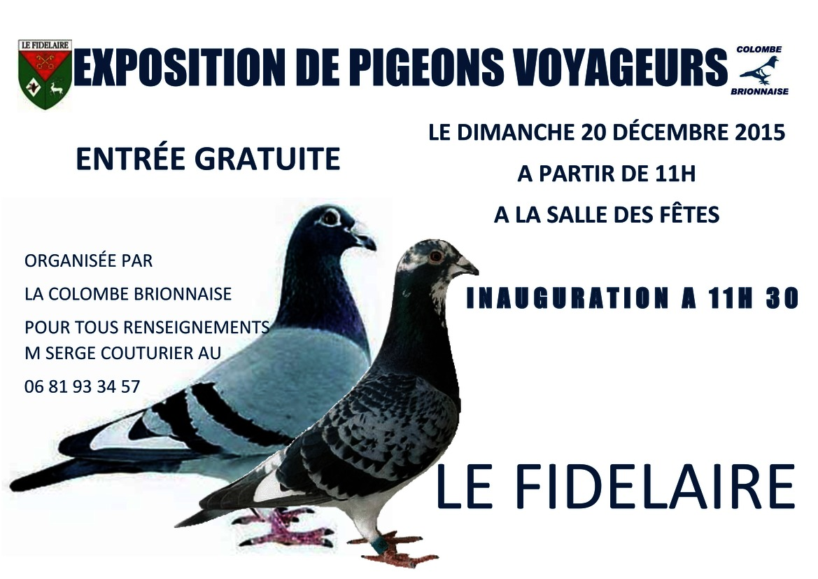 Pigeon page1